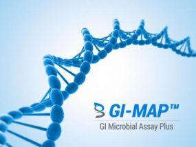 GI Map Gut Health Digestive Test