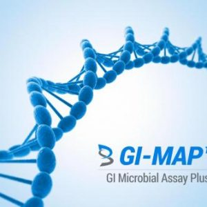 GI Map Gut Health Digestive Test
