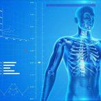 human-skeleton-163715_1280-copy